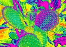 Τοπίο κάκτων στο φωτεινό βαμμένο duotone υπόβαθρο χρωμάτων Επίδραση νέου πυράκτωσης Τομέας κάκτων Κήπος του λουλουδιού και των εγ διανυσματική απεικόνιση