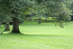 τοπίο κήπων Στοκ Εικόνα