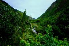 Τοπίο κοιλάδων Iao, Maui στοκ εικόνες