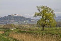 Τοπίο κοντά σε Motovun σε Istria στοκ φωτογραφία