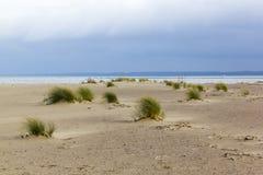Τοπίο κοντά στις εκβολές του ποταμού Vistula στη θάλασσα της Βαλτικής, Πολωνία Στοκ Εικόνα