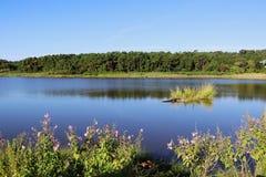 Τοπίο κρατικών πάρκων Χάντινγκτον Μπιτς Στοκ φωτογραφία με δικαίωμα ελεύθερης χρήσης