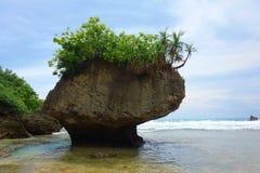 Τοπίο λίγου Liuqiu, βράχος βάζων στο νησί Liuqiu, Pingtung, Ταϊβάν στοκ φωτογραφίες