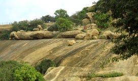 Τοπίο λόφων σφαιρών και δέντρων ενός βράχου sittanavasal στοκ εικόνες