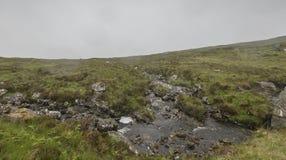 Τοπίο μέσα στο πέρασμα της διαδρομής βοοειδών Στοκ Εικόνες