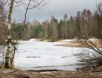 Τοπίο Μαρτίου άνοιξη στην ξύλινη λίμνη Στοκ φωτογραφία με δικαίωμα ελεύθερης χρήσης