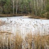 Τοπίο Μαρτίου άνοιξη στη λίμνη Στοκ Εικόνες