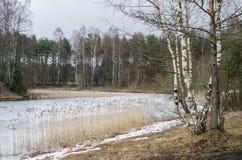 Τοπίο Μαρτίου άνοιξη Στοκ Φωτογραφία