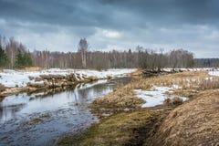 Τοπίο Μαρτίου άνοιξη Στοκ Εικόνα