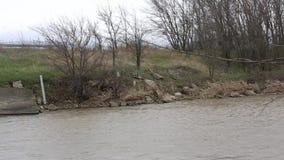 Τοπίο με έναν θυελλώδη ποταμό άνοιξη απόθεμα βίντεο