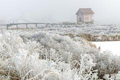 Τοπίο με μια εγκαταλειμμένη καμπίνα στην ομίχλη Στοκ Εικόνες
