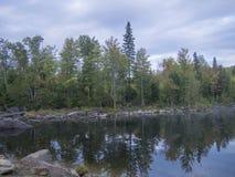 Τοπίο με τα δέντρα και τους ουρανούς στοκ φωτογραφίες με δικαίωμα ελεύθερης χρήσης