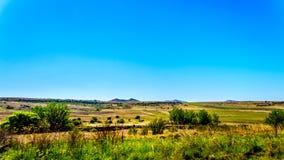 Τοπίο με τα εύφορα καλλιεργήσιμα εδάφη κατά μήκος της εθνικής οδού R26, στην ελεύθερη κρατική επαρχία της Νότιας Αφρικής Στοκ Εικόνα