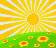 Τοπίο με τα λουλούδια και τον ήλιο Στοκ Φωτογραφία