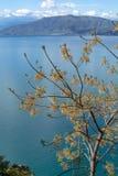 Τοπίο με τα μικρούς ελληνικούς νησιά και τους κόλπους στην Πελοπόννησο, Ελλάδα κοντά στην πόλη Nafplio, προορισμός θερινών διακοπ στοκ εικόνες
