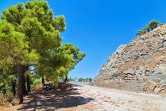 Τοπίο με τα οδικά δέντρα και τα βουνά Στοκ εικόνες με δικαίωμα ελεύθερης χρήσης