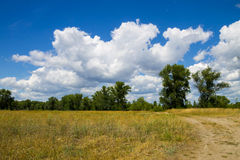 Τοπίο με τα πράσινους δέντρα, το λιβάδι και το μπλε ουρανό Στοκ φωτογραφίες με δικαίωμα ελεύθερης χρήσης