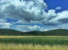 Τοπίο με τα σύννεφα Στοκ Εικόνα