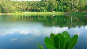 Τοπίο με τη λίμνη απόθεμα βίντεο
