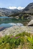 Τοπίο με τη μακριά λίμνη, βουνό Pirin, Βουλγαρία Στοκ φωτογραφίες με δικαίωμα ελεύθερης χρήσης