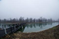 Τοπίο με τη misty ομίχλη πρωινού στη δασική λίμνη ή την όμορφη δασική λίμνη το πρωί στο χειμώνα Φύση του Αζερμπαϊτζάν Στοκ φωτογραφίες με δικαίωμα ελεύθερης χρήσης