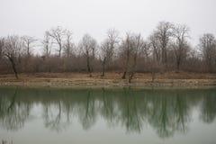 Τοπίο με τη misty ομίχλη πρωινού στη δασική λίμνη ή την όμορφη δασική λίμνη το πρωί στο χειμώνα Φύση του Αζερμπαϊτζάν Στοκ Φωτογραφίες