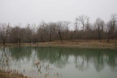 Τοπίο με τη misty ομίχλη πρωινού στη δασική λίμνη ή την όμορφη δασική λίμνη το πρωί στο χειμώνα Φύση του Αζερμπαϊτζάν Στοκ εικόνες με δικαίωμα ελεύθερης χρήσης