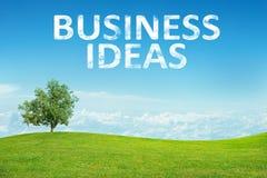 Τοπίο με τις λέξεις επιχειρησιακών ιδεών Στοκ Εικόνες