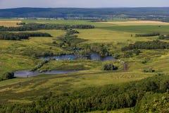 Τοπίο με τις αγελάδες, λίμνη, δασική άποψη από το βουνό Toratau Στοκ φωτογραφία με δικαίωμα ελεύθερης χρήσης