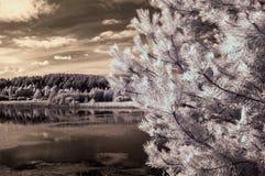 Τοπίο με τις υπέρυθρες ακτίνες λιμνών Στοκ φωτογραφίες με δικαίωμα ελεύθερης χρήσης