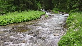 Τοπίο με τον καταρράκτη και ποταμός που ρέει στα βουνά απόθεμα βίντεο