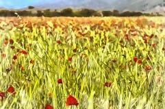 Τοπίο με τον κόκκινο τομέα παπαρουνών διανυσματική απεικόνιση
