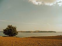 Τοπίο με τον ουρανό σύννεφων Στοκ φωτογραφίες με δικαίωμα ελεύθερης χρήσης