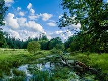 Τοπίο με τον ποταμό και τον τομέα Στοκ Εικόνες