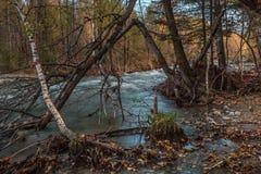 Τοπίο με τον ποταμό στα βουνά Altai, Ρωσία Στοκ Εικόνες