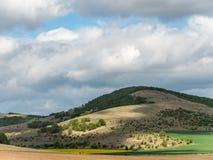 Τοπίο με τους τομείς γεωργίας και τις πράσινες περιοχές μια ηλιόλουστη ημέρα με το νεφελώδη ουρανό στοκ εικόνες