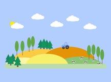 Τοπίο με τους τομείς, τη σιταποθήκη και τις αγελάδες Στοκ Εικόνες