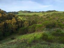 Τοπίο με τους λόφους στοκ εικόνες