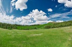 Τοπίο με το βαθύ μπλε ουρανό με τα άσπρα σύννεφα, το δάσος και το λιβάδι με την πολύβλαστη πράσινη χλόη Στοκ εικόνα με δικαίωμα ελεύθερης χρήσης