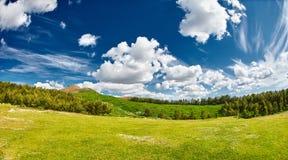 Τοπίο με το βαθύ μπλε ουρανό με τα άσπρα σύννεφα, το δάσος και το λιβάδι με την πολύβλαστη πράσινη χλόη Στοκ Φωτογραφίες