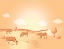 Τοπίο με το χρυσές λιβάδι και τις αγελάδες όμορφη κοιλάδα Στοκ Εικόνα