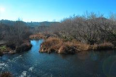 Τοπίο μια σαφή ηλιόλουστη ημέρα: ποταμός, δέντρα, έντονο φως ήλιων στοκ φωτογραφία με δικαίωμα ελεύθερης χρήσης