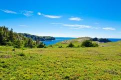 τοπίο νέα γη Στοκ εικόνες με δικαίωμα ελεύθερης χρήσης