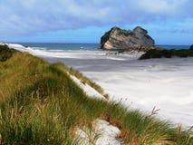 τοπίο Νέα Ζηλανδία παραλιών Στοκ εικόνες με δικαίωμα ελεύθερης χρήσης