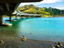 τοπίο Νέα Ζηλανδία Στοκ Εικόνες