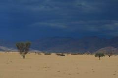 τοπίο Ναμιμπιανός στοκ φωτογραφίες