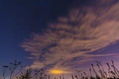 Τοπίο νύχτας με τα χορτάρια, τα αστέρια και τα σύννεφα Στοκ Εικόνες