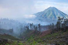 Τοπίο ξημερωμάτων με τη ζούγκλα πιό forrest και το ηφαίστειο, νησί της Ιάβας Στοκ εικόνα με δικαίωμα ελεύθερης χρήσης