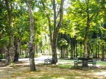 τοπίο πάρκων πάγκων φθινοπώρου Στοκ Εικόνα