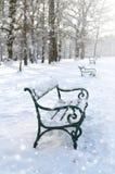 τοπίο πάρκων πάγκων φθινοπώρου 33c ural χειμώνας θερμοκρασίας της Ρωσίας τοπίων Ιανουαρίου Στοκ φωτογραφίες με δικαίωμα ελεύθερης χρήσης